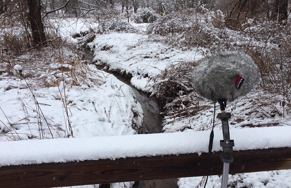 winter creek stosht